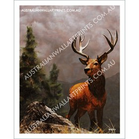 Red Stag in the Highlands Art Print